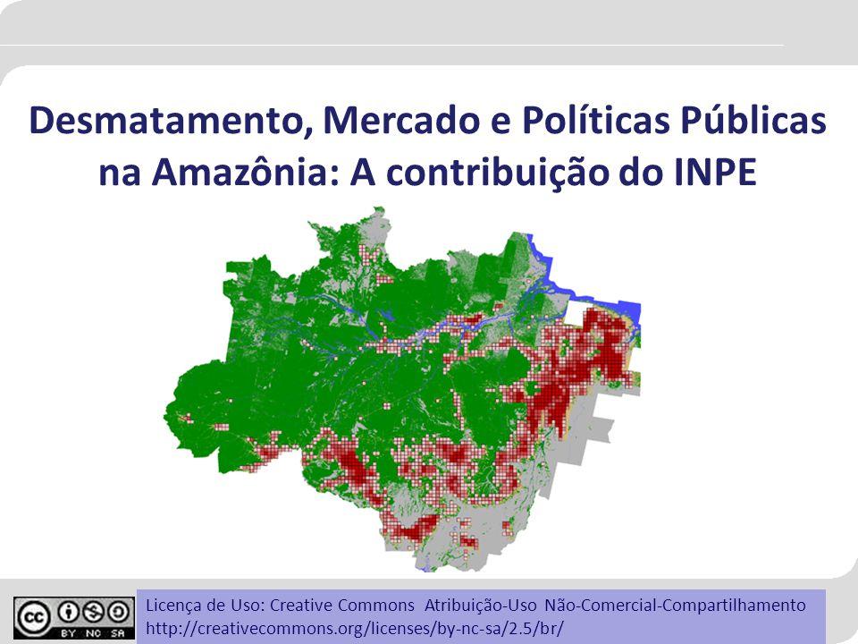 Desmatamento, Mercado e Políticas Públicas na Amazônia: A contribuição do INPE