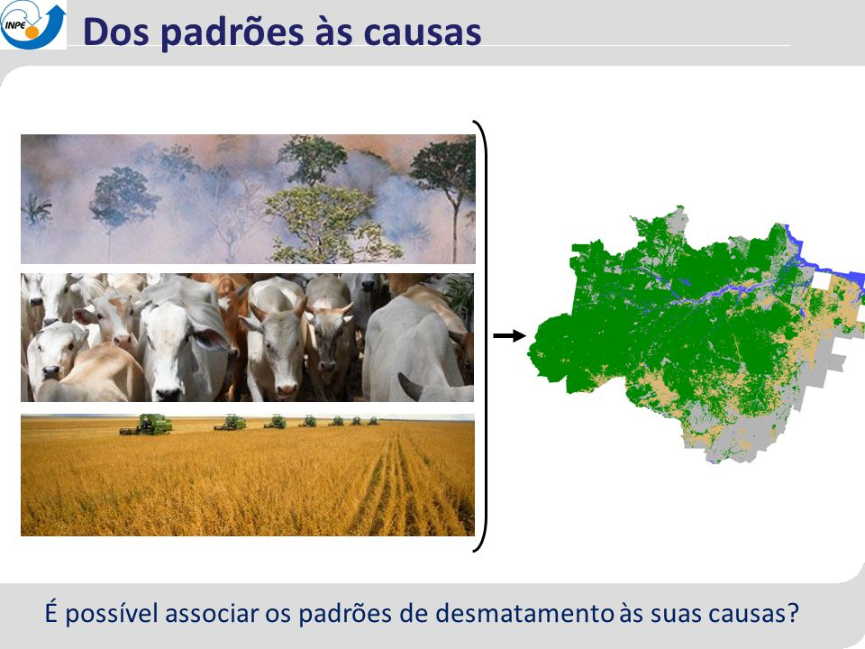 Dos padrões às causas É possível associar os padrões de desmatamento às suas causas