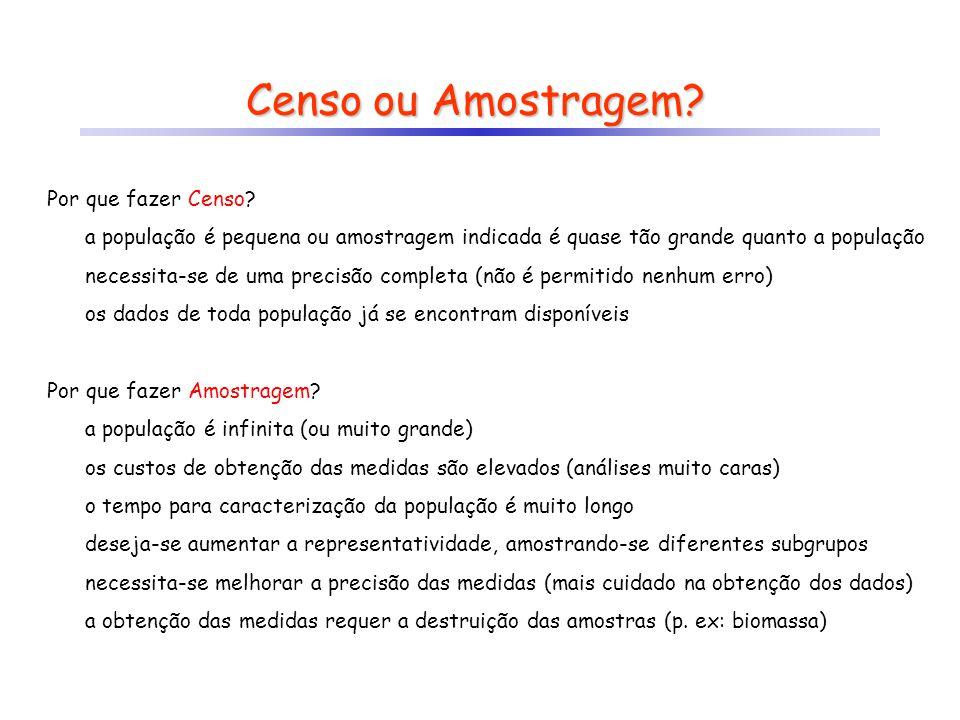Censo ou Amostragem Por que fazer Censo