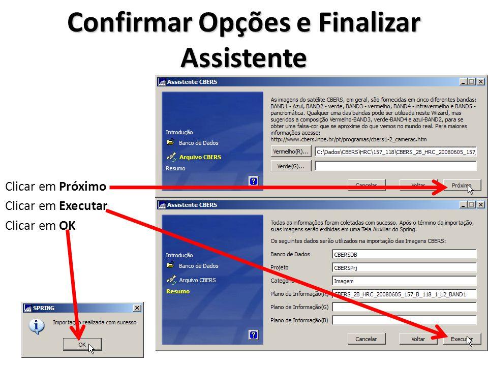 Confirmar Opções e Finalizar Assistente