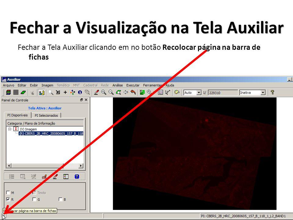 Fechar a Visualização na Tela Auxiliar