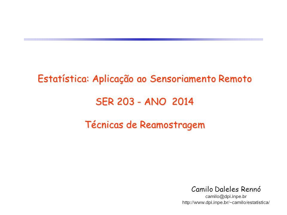 Estatística: Aplicação ao Sensoriamento Remoto SER 203 - ANO 2014 Técnicas de Reamostragem