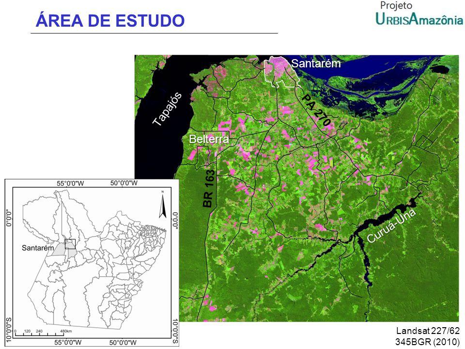 ÁREA DE ESTUDO Santarém Tapajós PA 270 Belterra BR 163 Curuá-Una