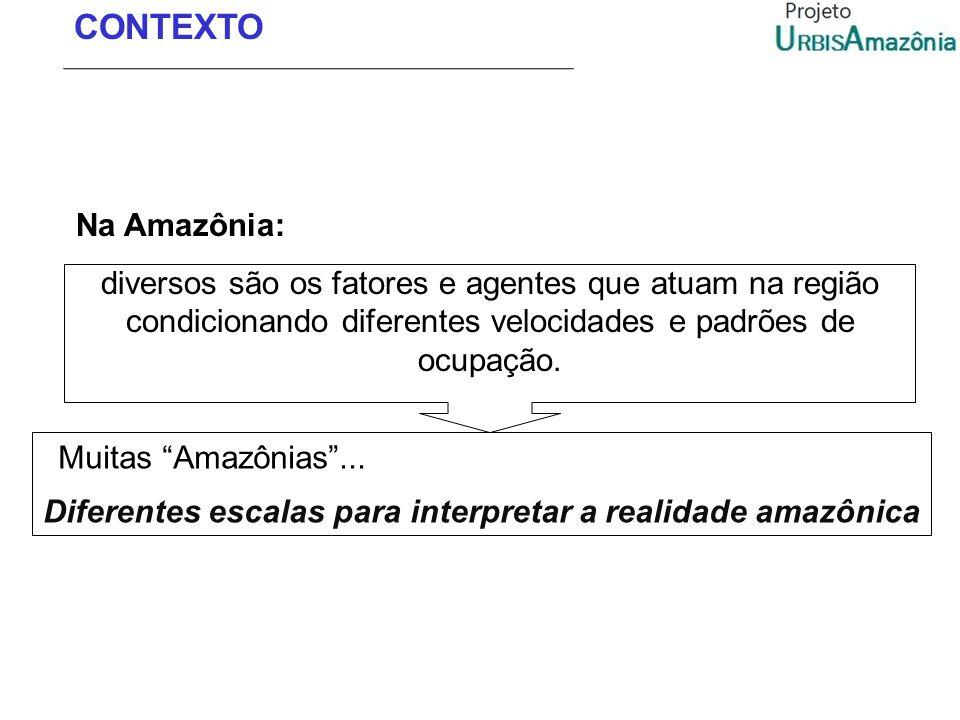 Diferentes escalas para interpretar a realidade amazônica