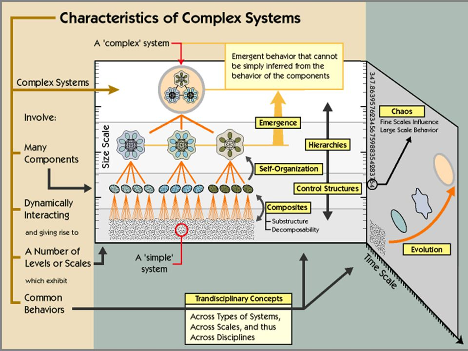 What are complex adaptive systems