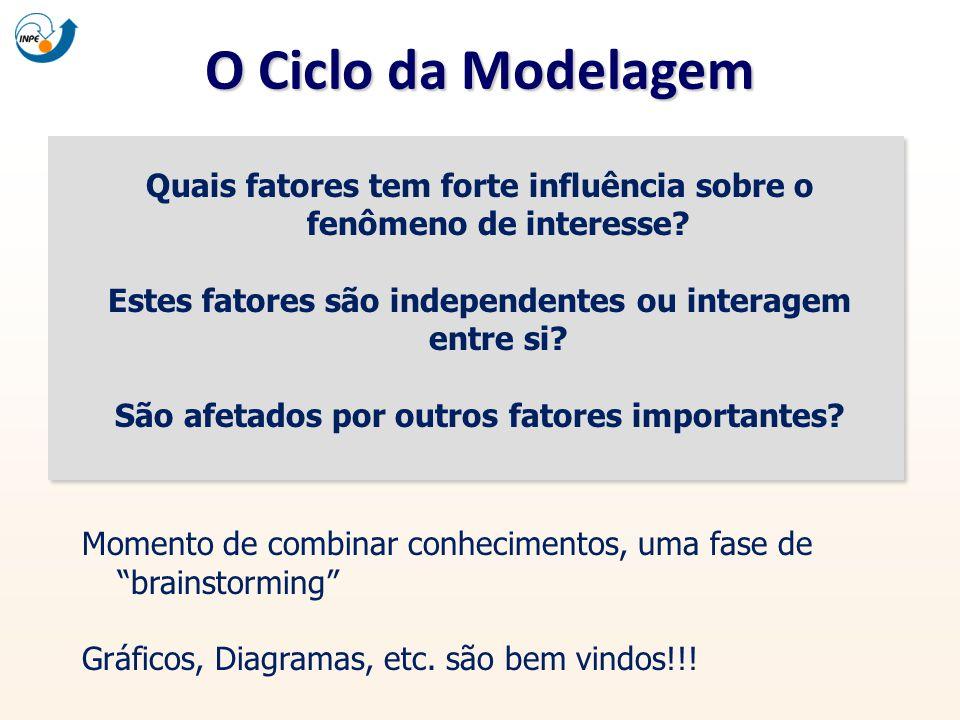 O Ciclo da Modelagem Quais fatores tem forte influência sobre o fenômeno de interesse Estes fatores são independentes ou interagem entre si
