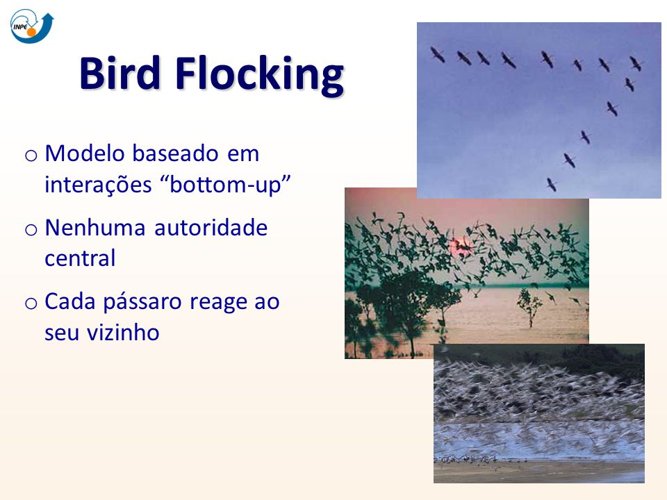 Bird Flocking Modelo baseado em interações bottom-up