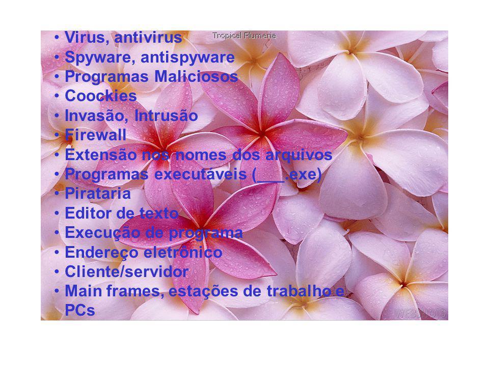 Virus, antivirus Spyware, antispyware. Programas Maliciosos. Coockies. Invasão, Intrusão. Firewall.