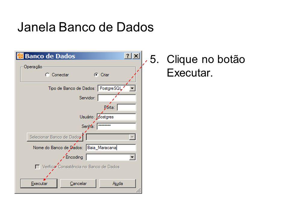 Janela Banco de Dados Clique no botão Executar.