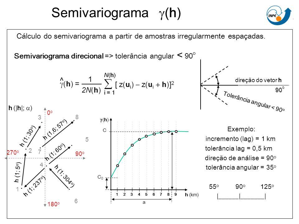 Semivariograma g(h) Cálculo do semivariograma a partir de amostras irregularmente espaçadas. Semivariograma direcional => tolerância angular < 90o.
