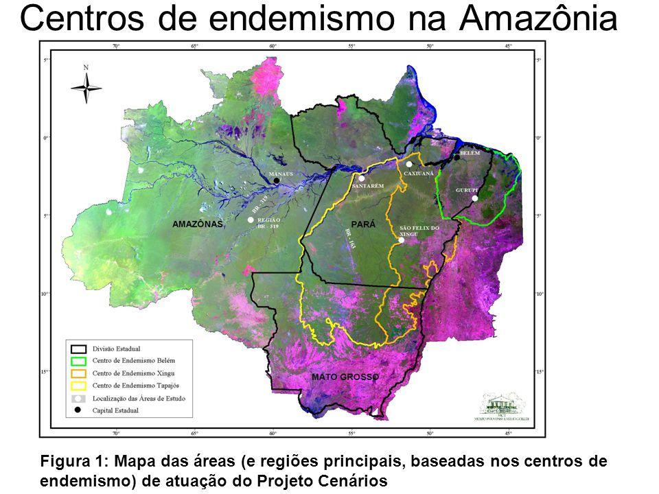 Centros de endemismo na Amazônia