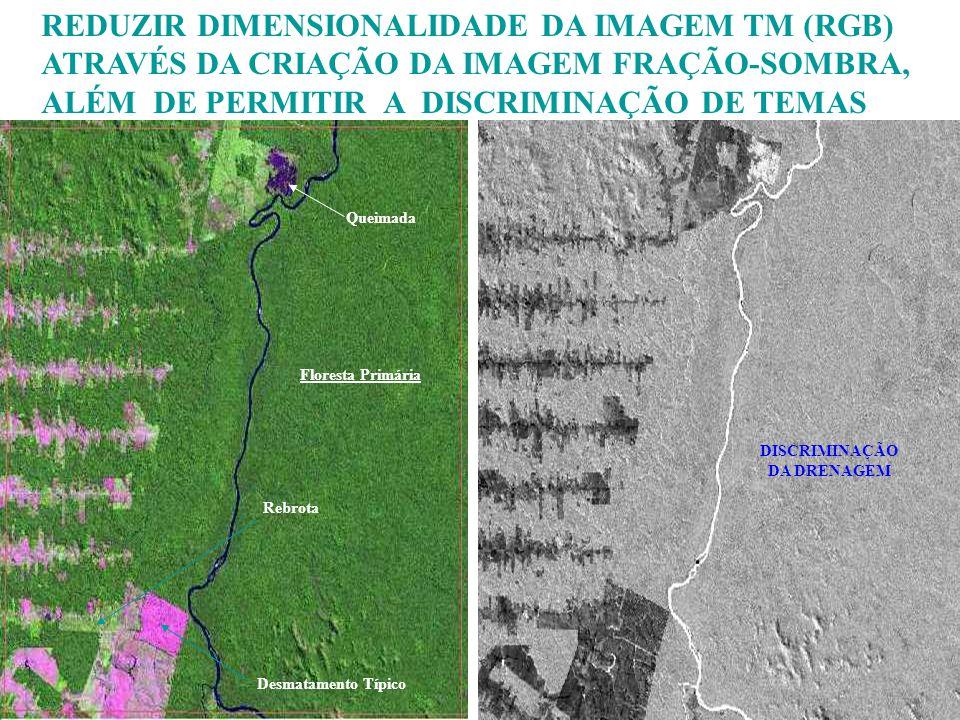REDUZIR DIMENSIONALIDADE DA IMAGEM TM (RGB)