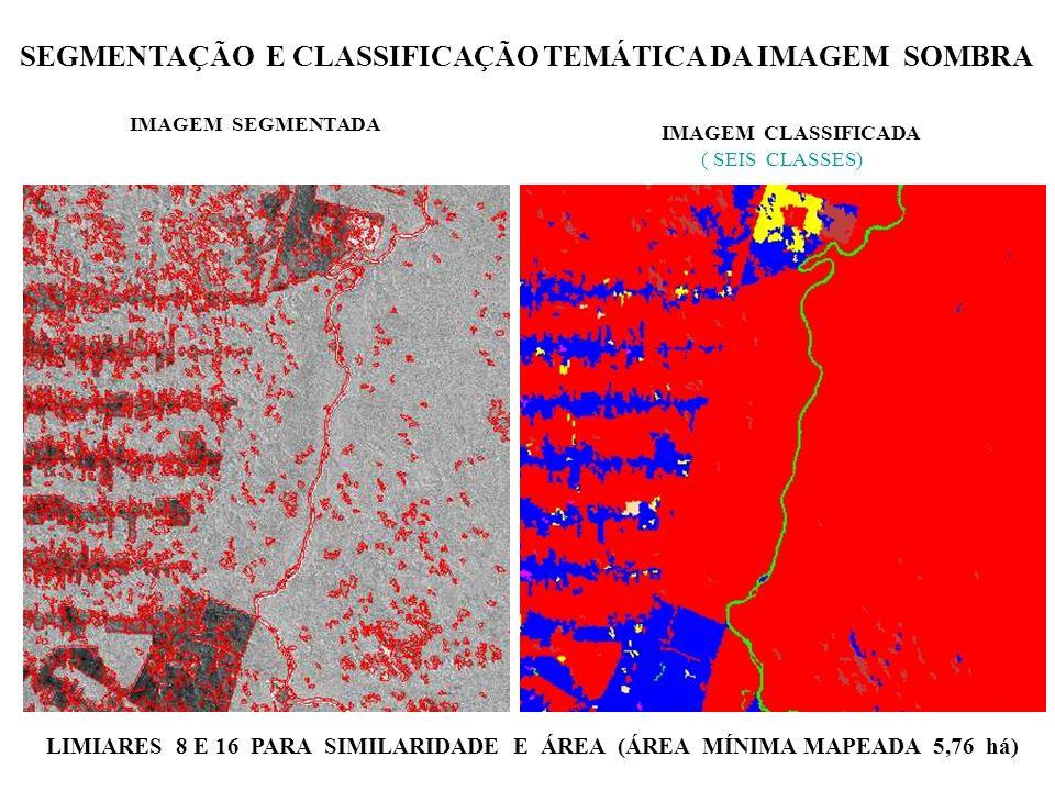SEGMENTAÇÃO E CLASSIFICAÇÃO TEMÁTICA DA IMAGEM SOMBRA