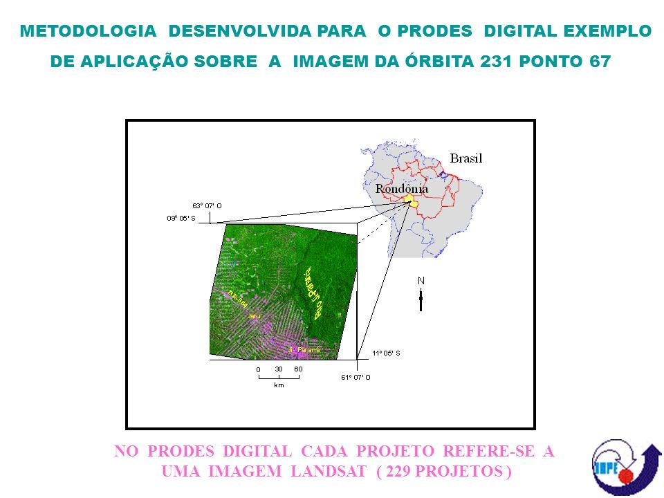 METODOLOGIA DESENVOLVIDA PARA O PRODES DIGITAL EXEMPLO