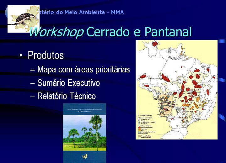 Workshop Cerrado e Pantanal