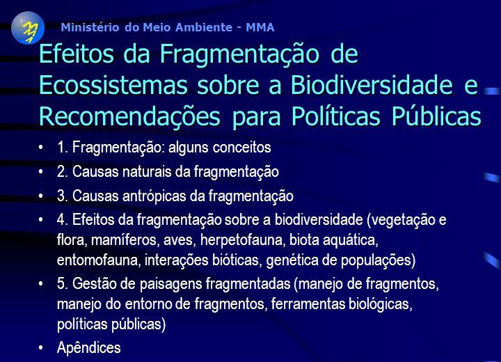 Efeitos da Fragmentação de Ecossistemas sobre a Biodiversidade e Recomendações para Políticas Públicas