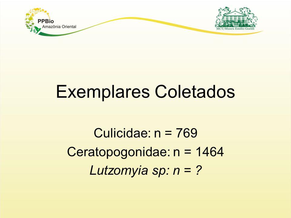 Culicidae: n = 769 Ceratopogonidae: n = 1464 Lutzomyia sp: n =