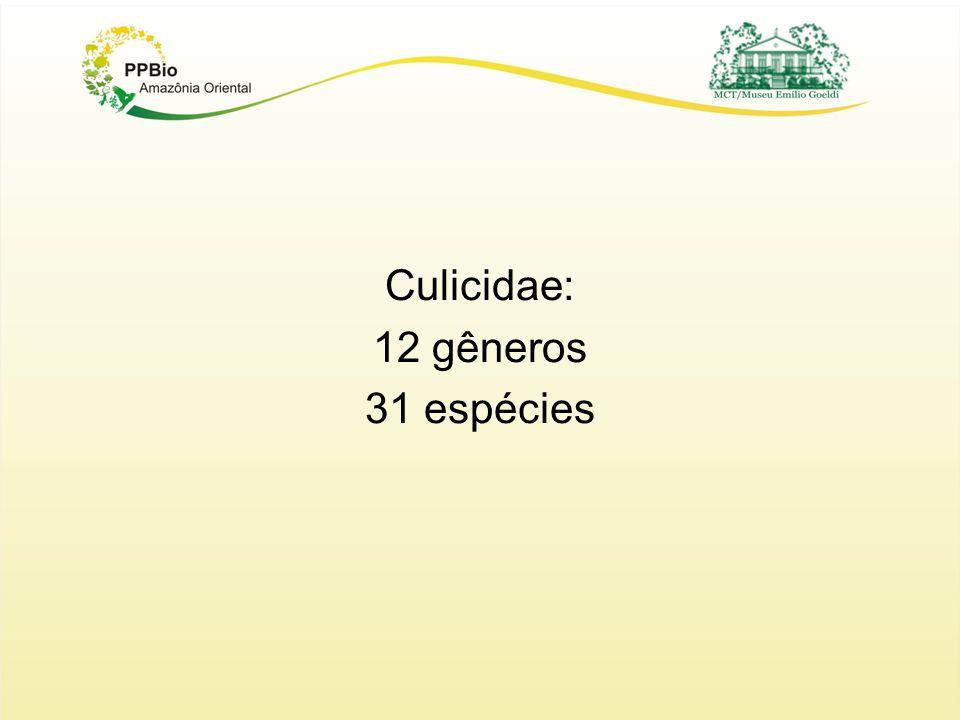 Culicidae: 12 gêneros 31 espécies