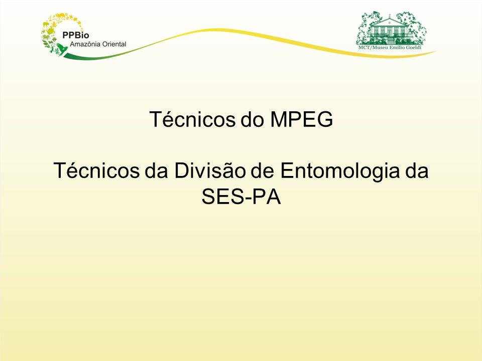 Técnicos do MPEG Técnicos da Divisão de Entomologia da SES-PA