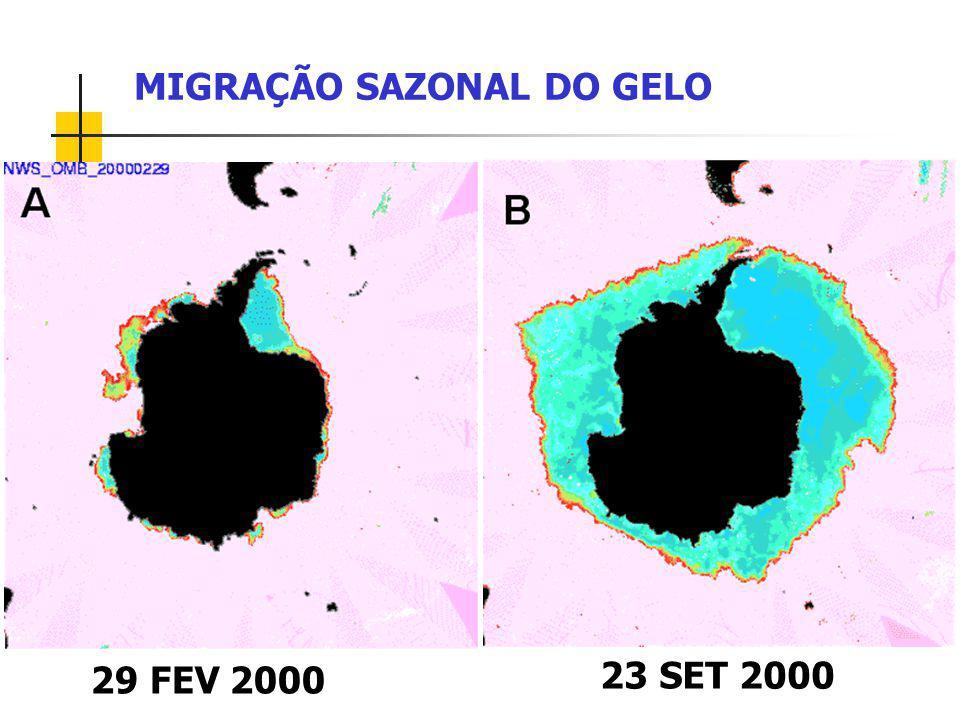 MIGRAÇÃO SAZONAL DO GELO