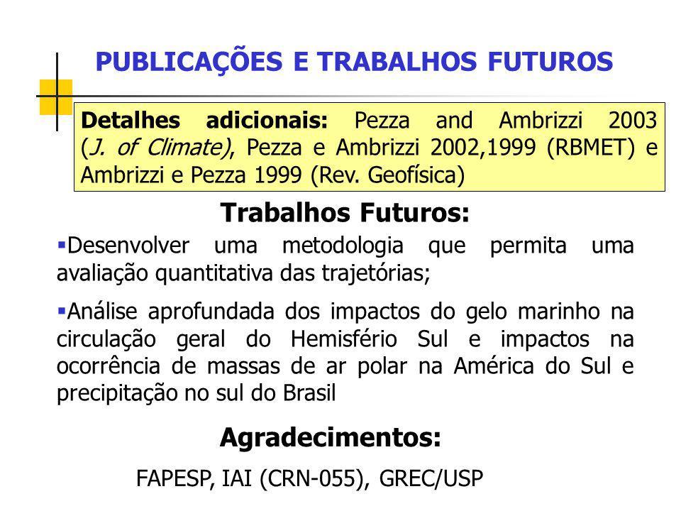 PUBLICAÇÕES E TRABALHOS FUTUROS