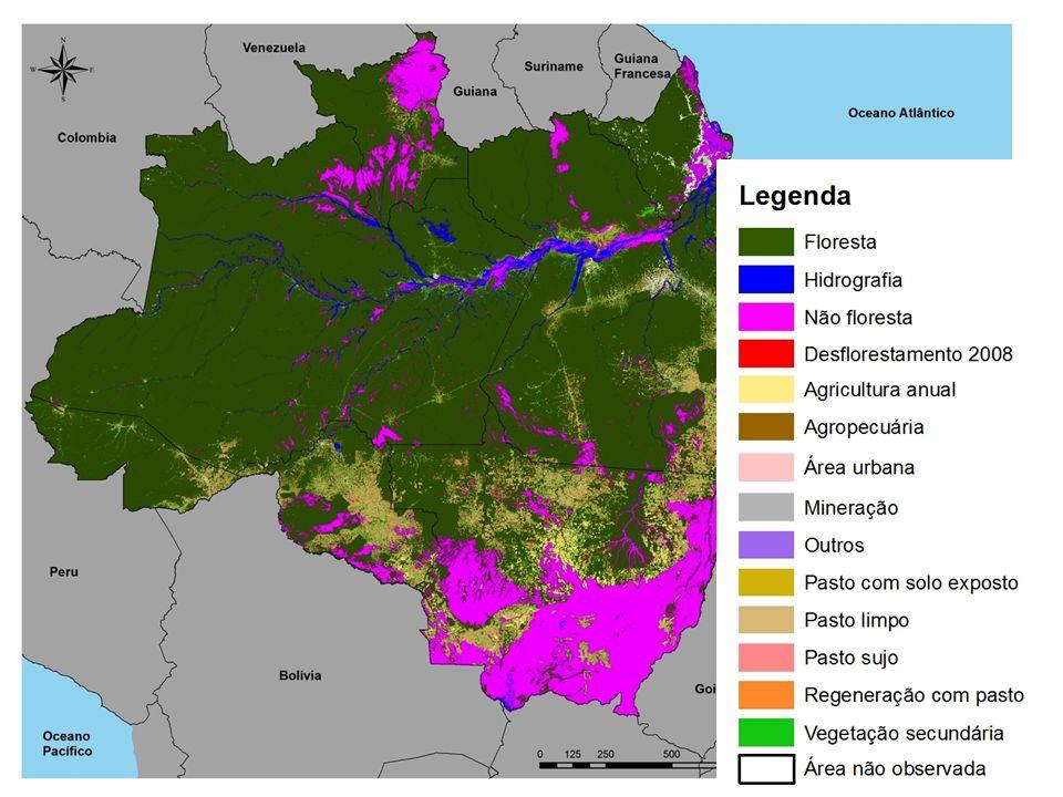 Informações Gerais 719 mil km2 de informações de uso e cobertura distribuidos na Amazônia em 10 classes.