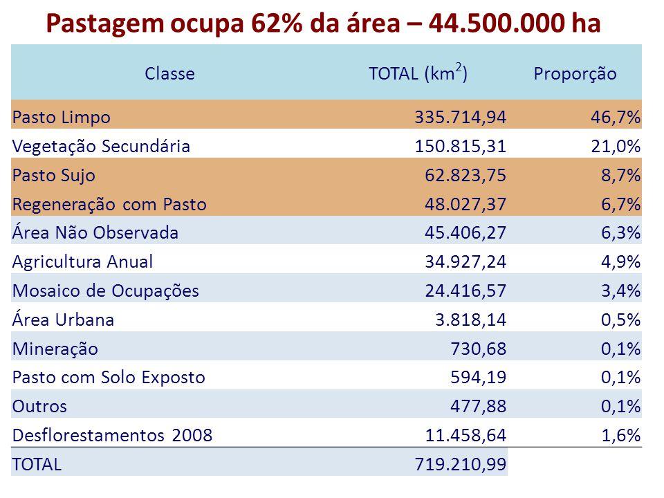 Pastagem ocupa 62% da área – 44.500.000 ha