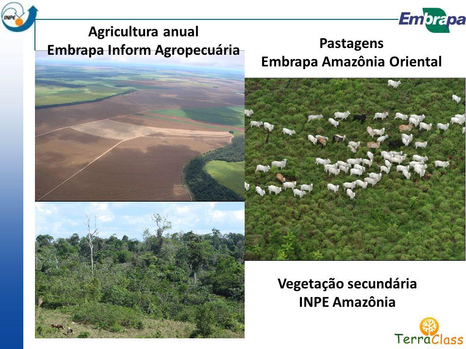 Embrapa Inform Agropecuária Embrapa Amazônia Oriental