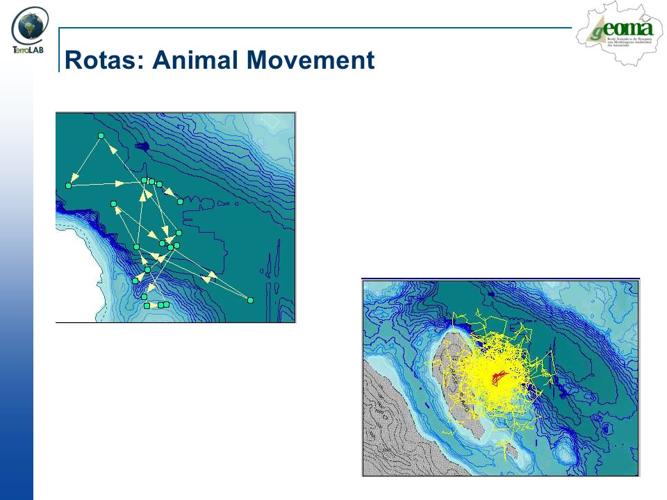 Rotas: Animal Movement