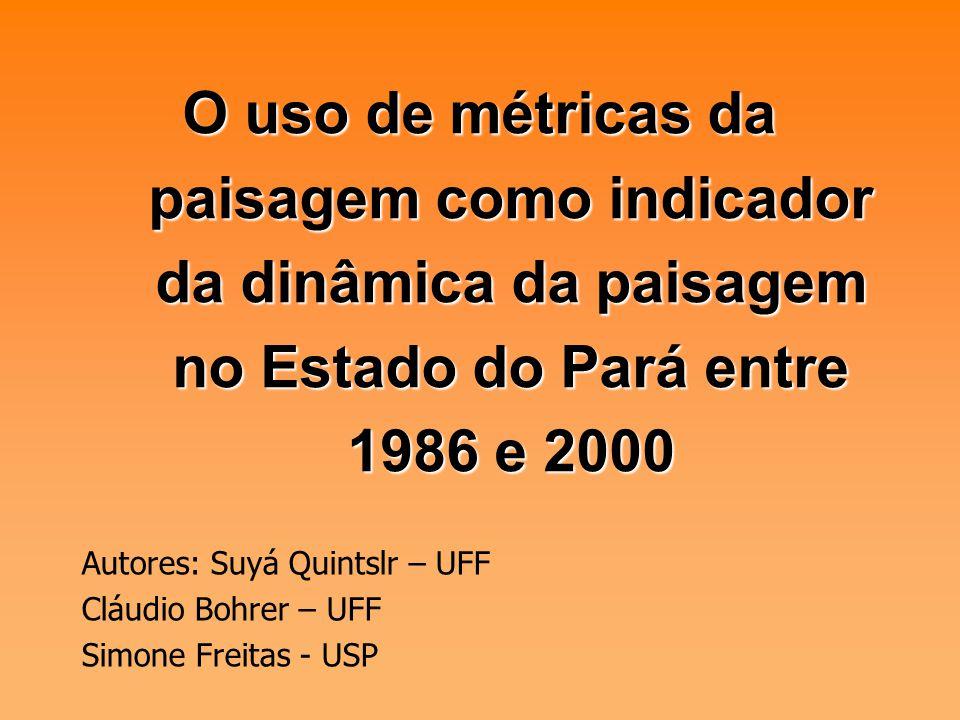 O uso de métricas da paisagem como indicador da dinâmica da paisagem no Estado do Pará entre 1986 e 2000