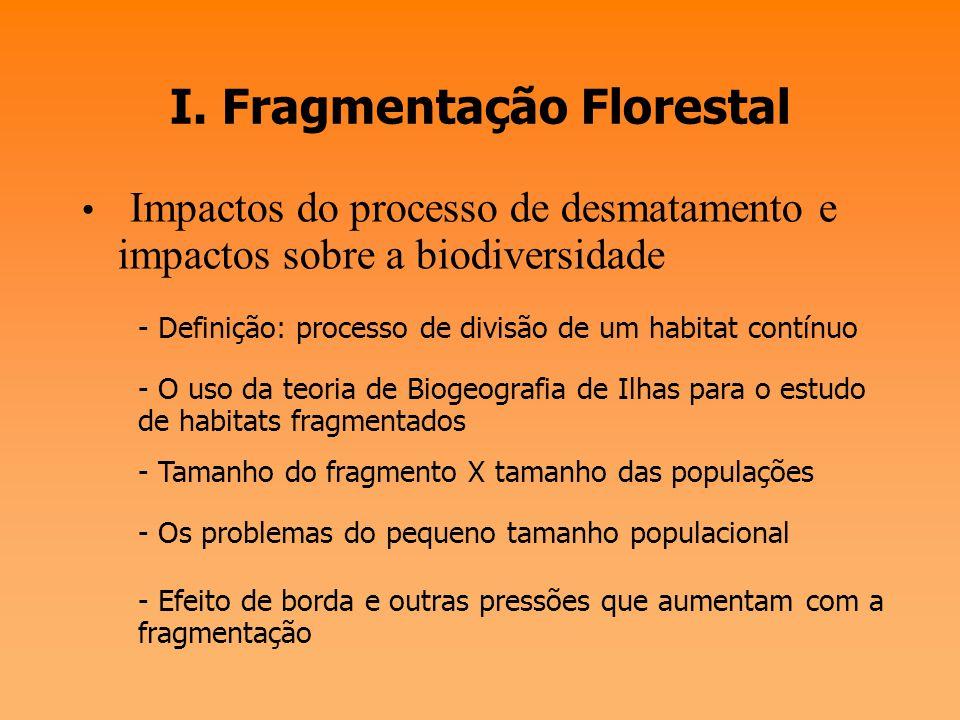 I. Fragmentação Florestal