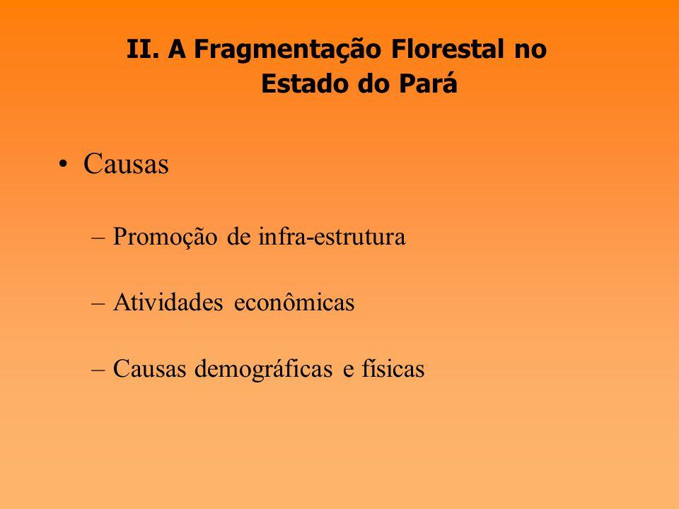 II. A Fragmentação Florestal no Estado do Pará