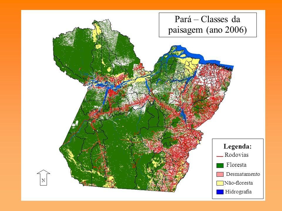 Pará – Classes da paisagem (ano 2006)