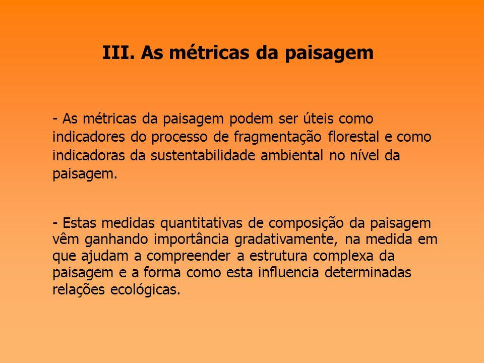 III. As métricas da paisagem