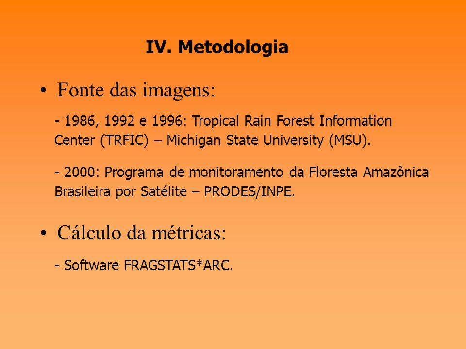 Fonte das imagens: Cálculo da métricas: IV. Metodologia