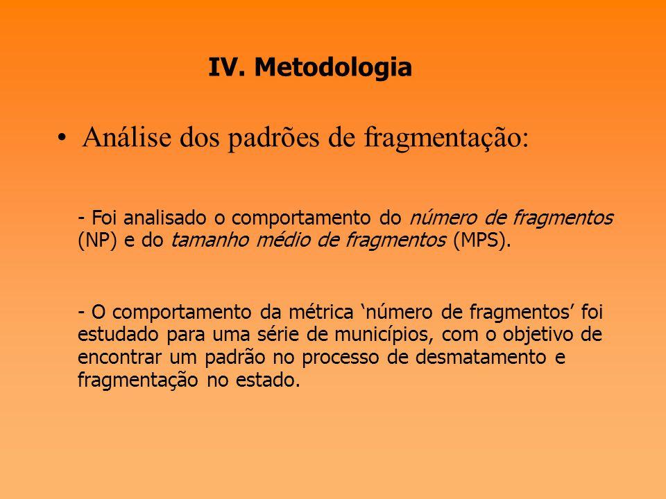 Análise dos padrões de fragmentação: