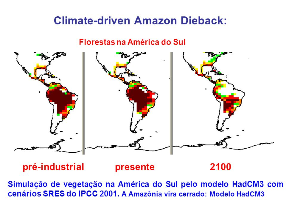 Climate-driven Amazon Dieback: