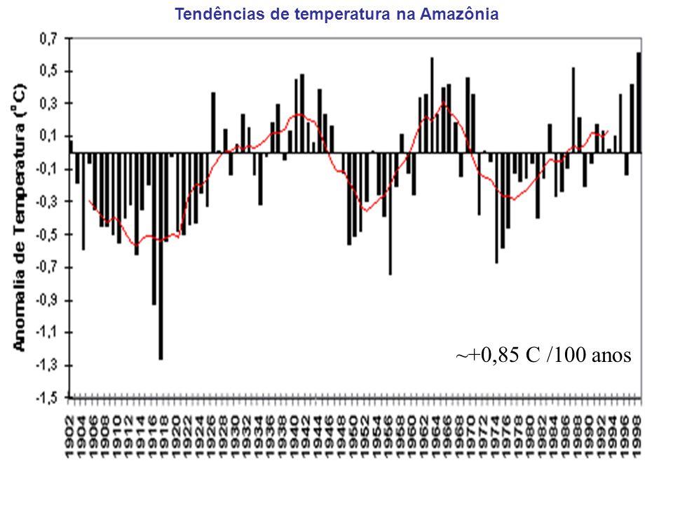 Tendências de temperatura na Amazônia