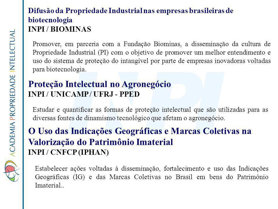 Proteção Intelectual no Agronegócio INPI / UNICAMP / UFRJ - PPED