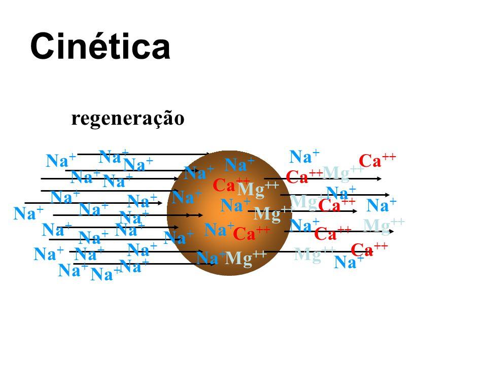 Cinética regeneração Na+ Na+ Na+ Ca++ Na+ Na+ Na+ Mg++ Na+ Ca++ Na+