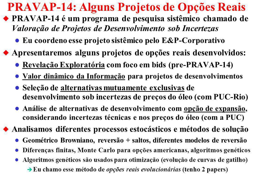PRAVAP-14: Alguns Projetos de Opções Reais