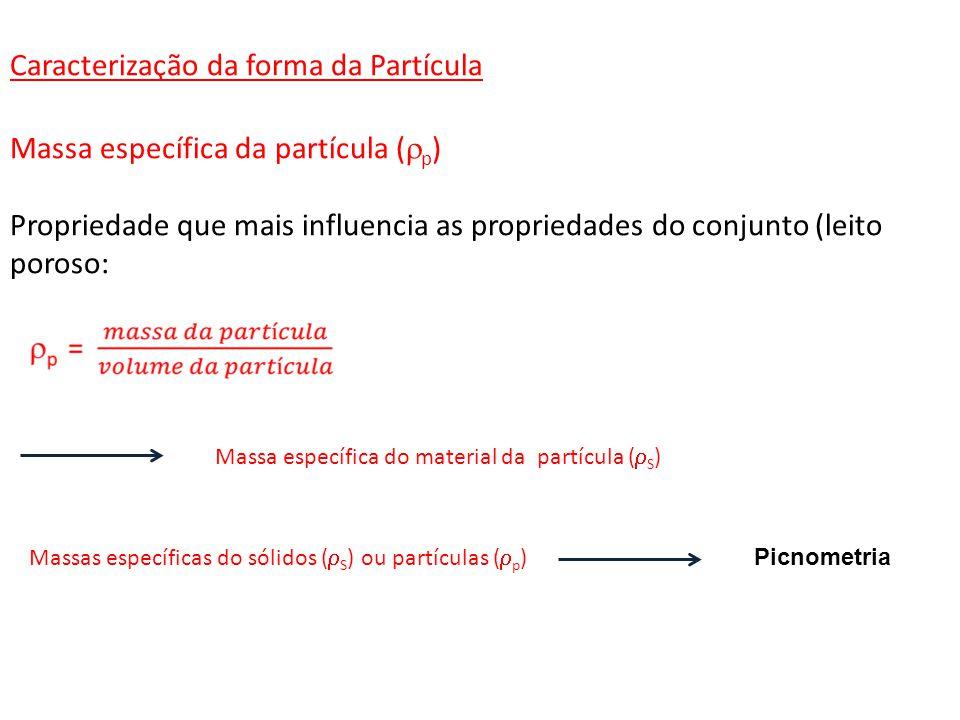 Caracterização da forma da Partícula