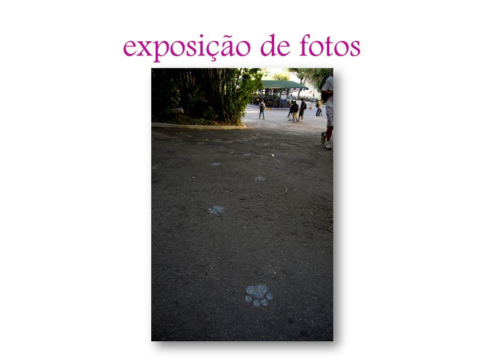 exposição de fotos