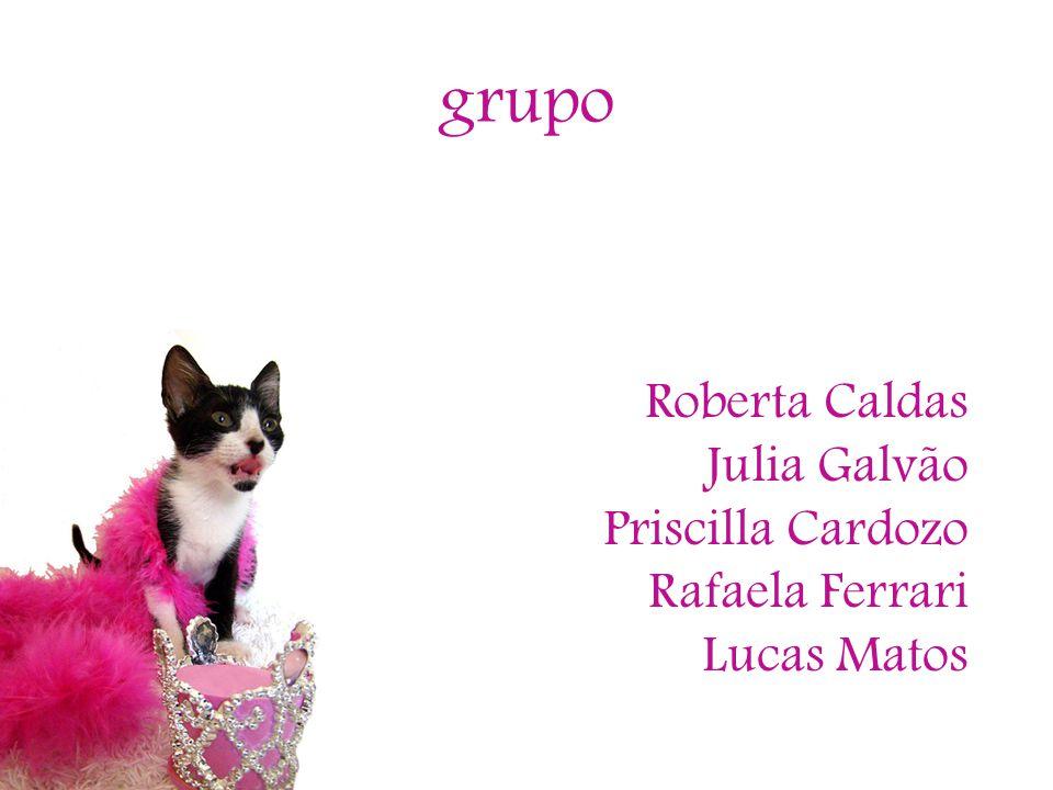 grupo Roberta Caldas Julia Galvão Priscilla Cardozo Rafaela Ferrari