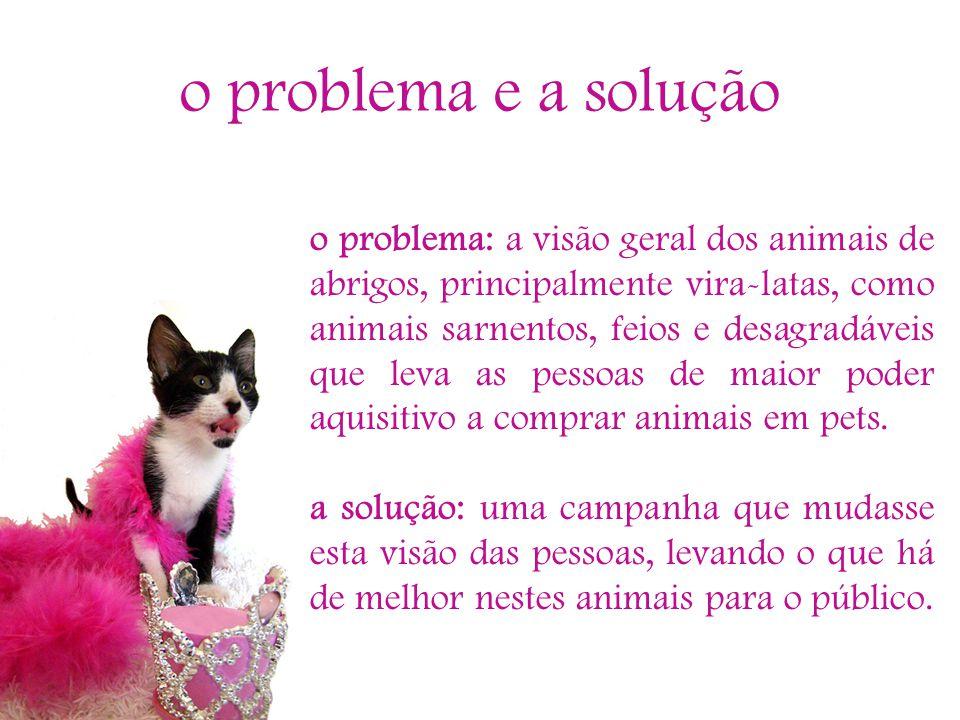 o problema e a solução