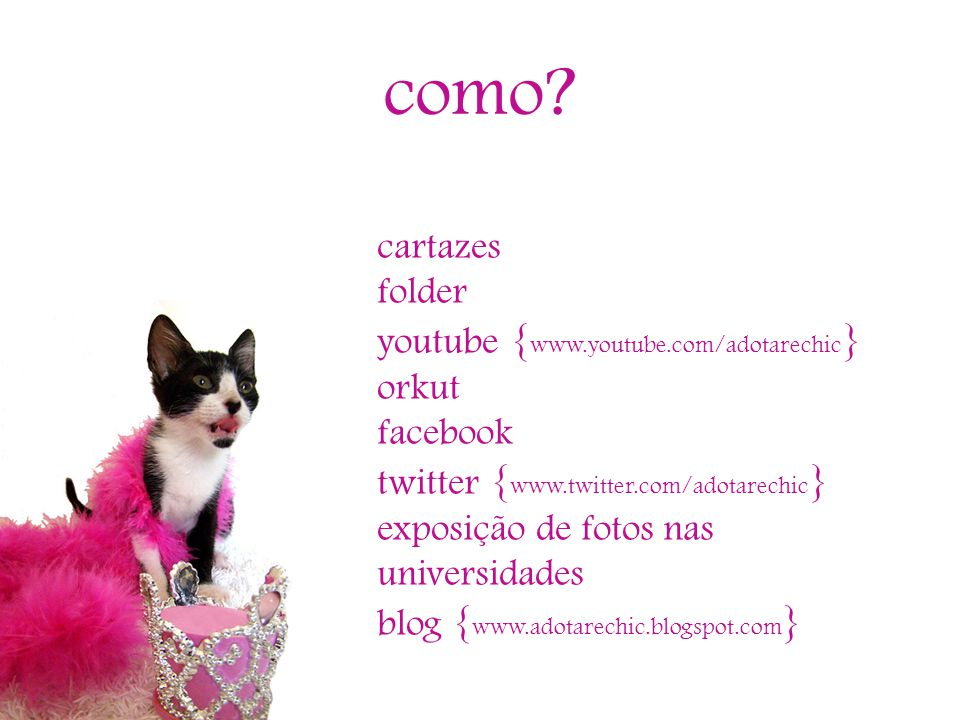 como cartazes folder youtube {www.youtube.com/adotarechic} orkut