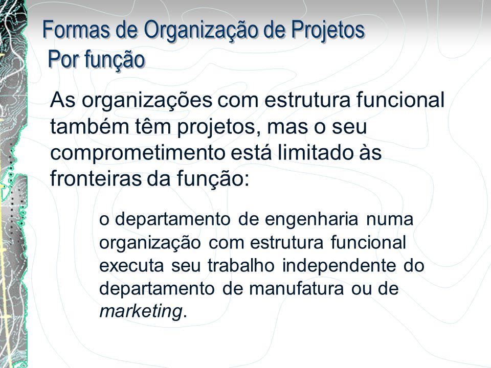 Formas de Organização de Projetos Por função