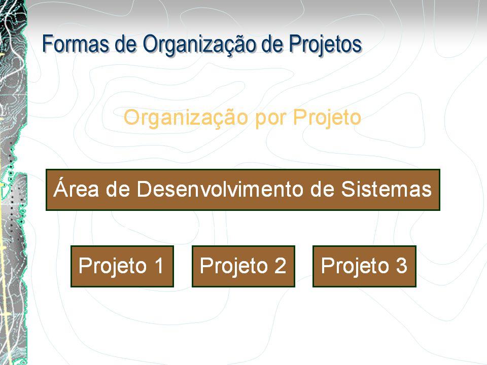 Formas de Organização de Projetos