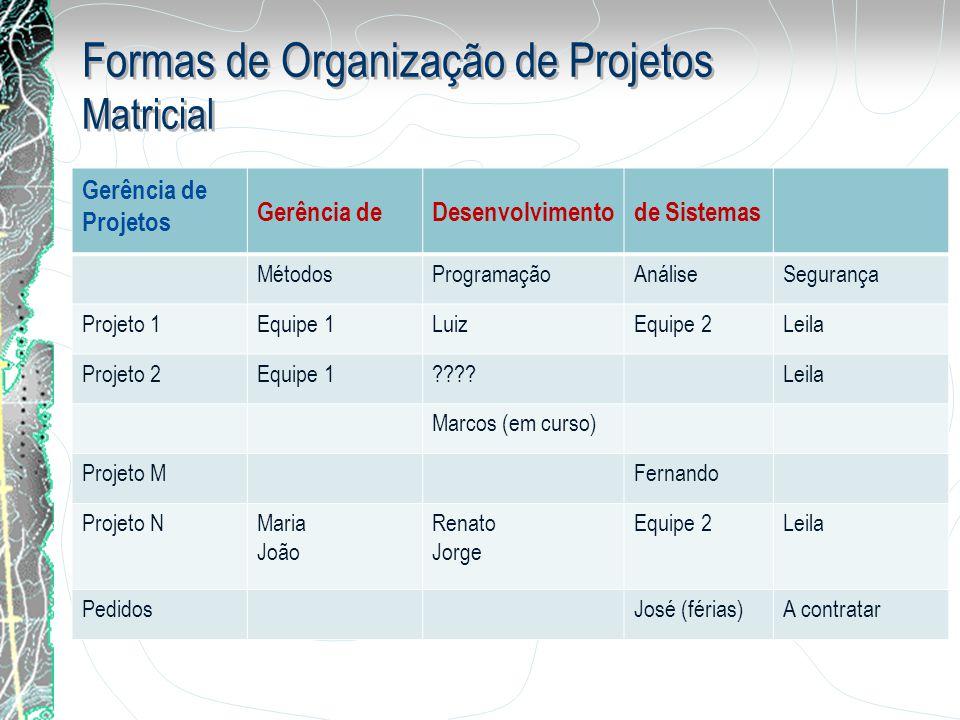 Formas de Organização de Projetos Matricial