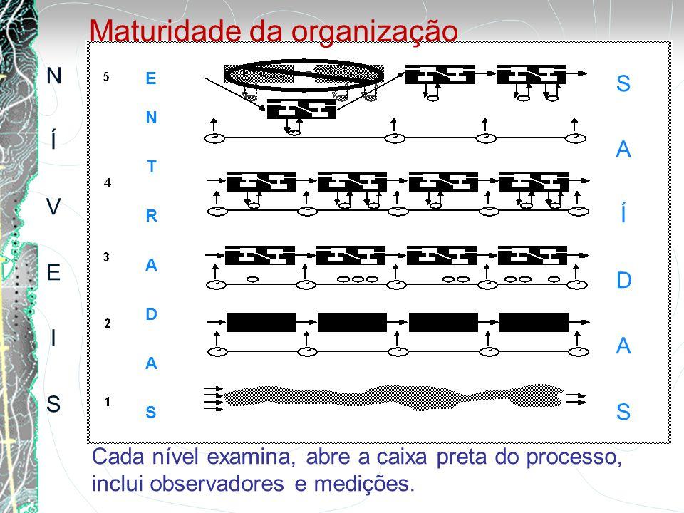 Maturidade da organização